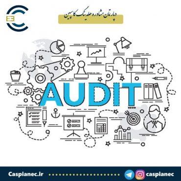 Process layer audit