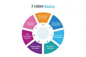 اصول مدیریت منابع انسانی/ تجزیه و تحلیل